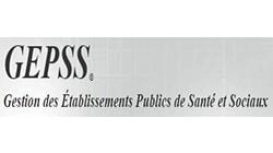 logo GEPSS